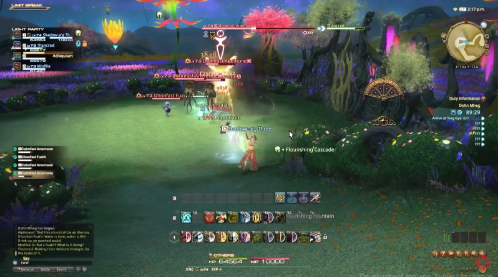 Final Fantasy XIV DPS screenshot